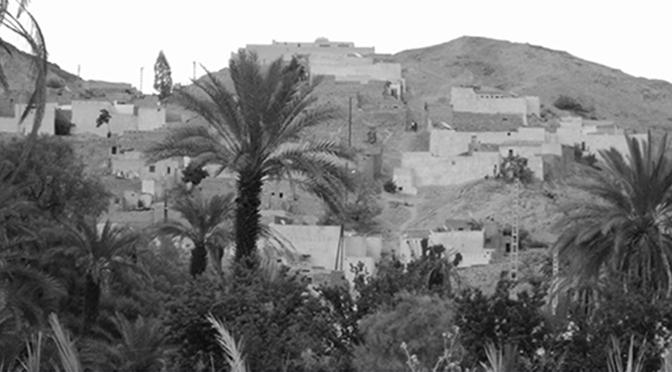 Les Touaregs du Tassili n'Ajjer : Pour une lecture renouvelée de la structure sociopolitique touarègue